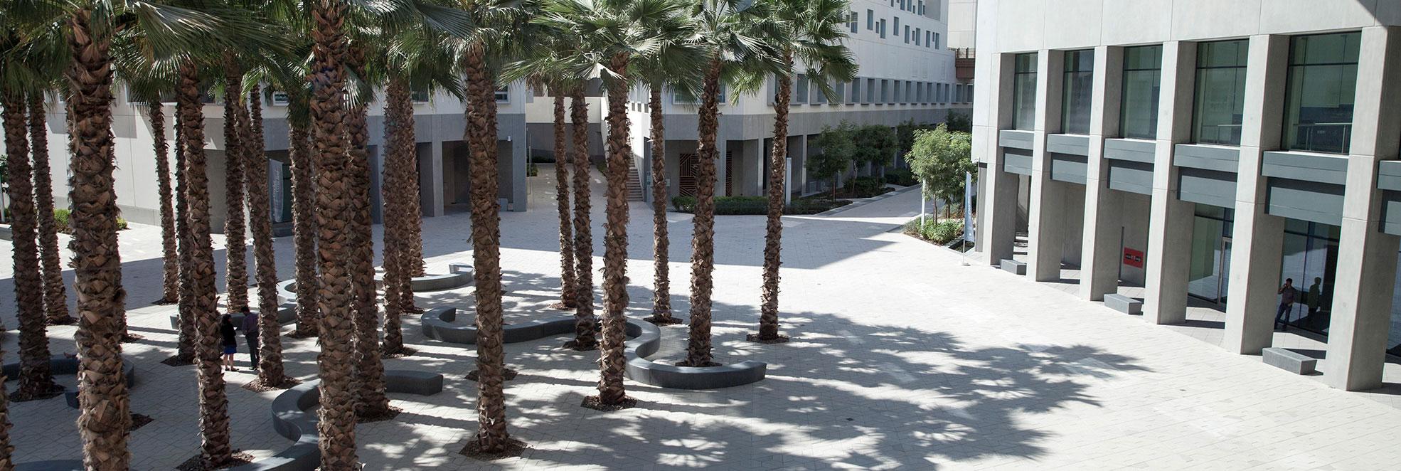 Registrar - NYU Abu Dhabi