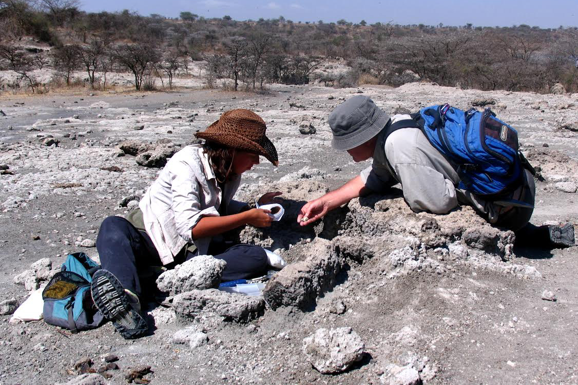 In Search of Human Origins: A Paleontologist's Perspective