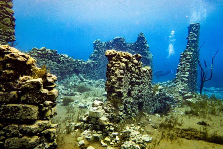 The Submerged World of the Arabian Gulf