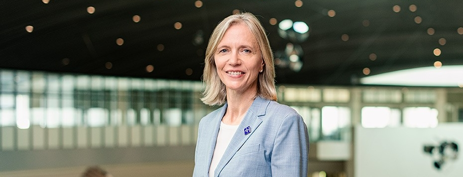 Mariët Westermann, Vice Chancellor of NYU Abu Dhabi