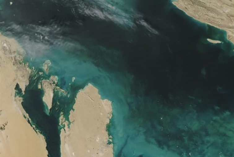 Phytoplankton bloom in the Arabian Gulf, Credit: Jeff Schmaltz, MODIS Rapid Response Team,NASA/GSFC