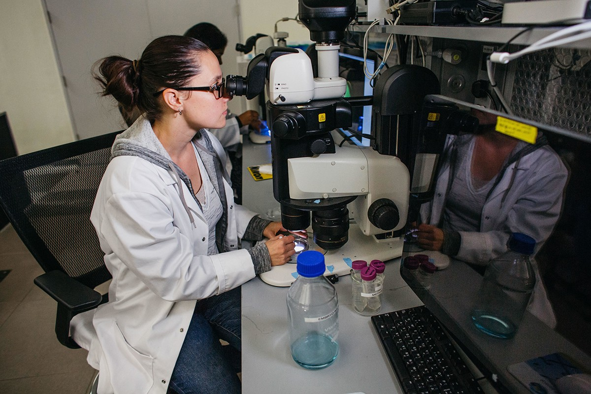 A student looks into a microscope at NYU Abu Dhabi.