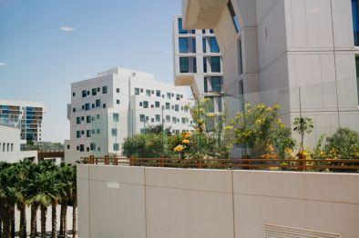 Graduate - NYU Abu Dhabi