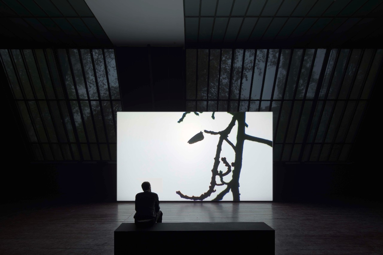 Installation view: Amar Kanwar: The Sovereign Forest, Thyssen-Bornemisza Art Contemporary, 2014