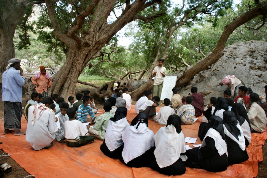 High school students in Socotra receive environmental awareness lessons. Nathalie Peutz