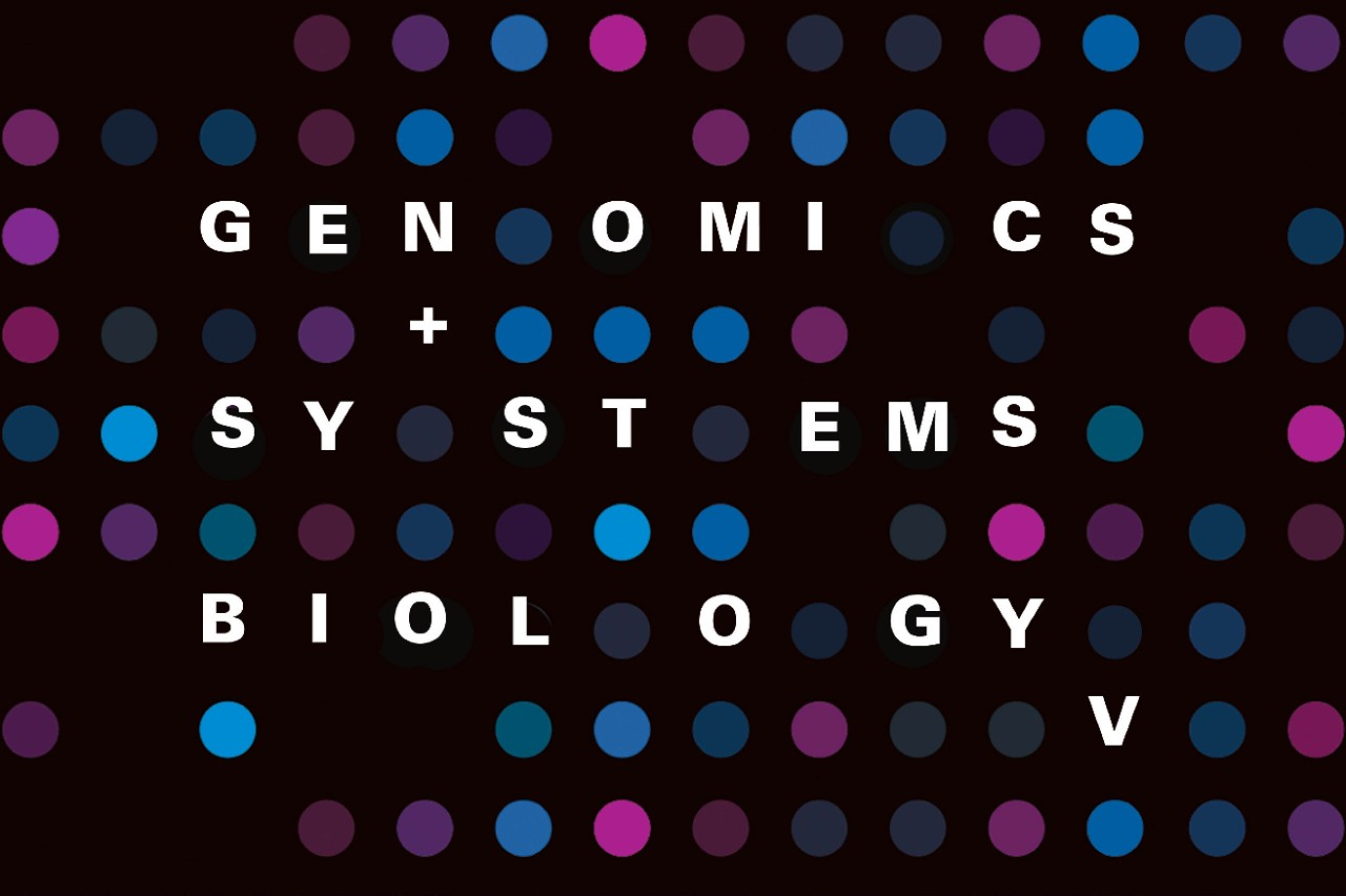 NYUAD Hosts Annual Conference on Genomics and Systems Biology