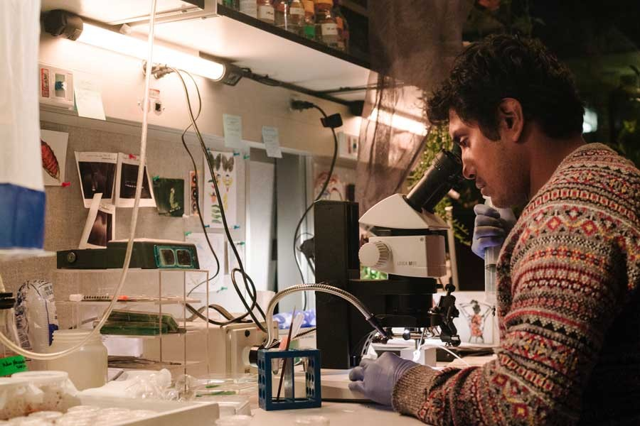 Mendel (Tenoch Huerta) looks through a microscope. Photo credit: Renée Xie