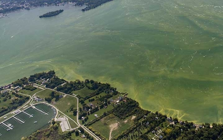 An aerial view of a large harmful algal bloom in Lake Erie, September 2017.