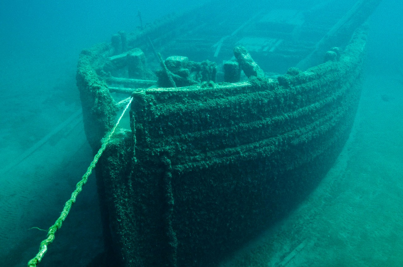 A shipwreck fully covered by fouling algae and other organisms - Courtesy National Oceanic and Atmospheric Administration (NOAA)