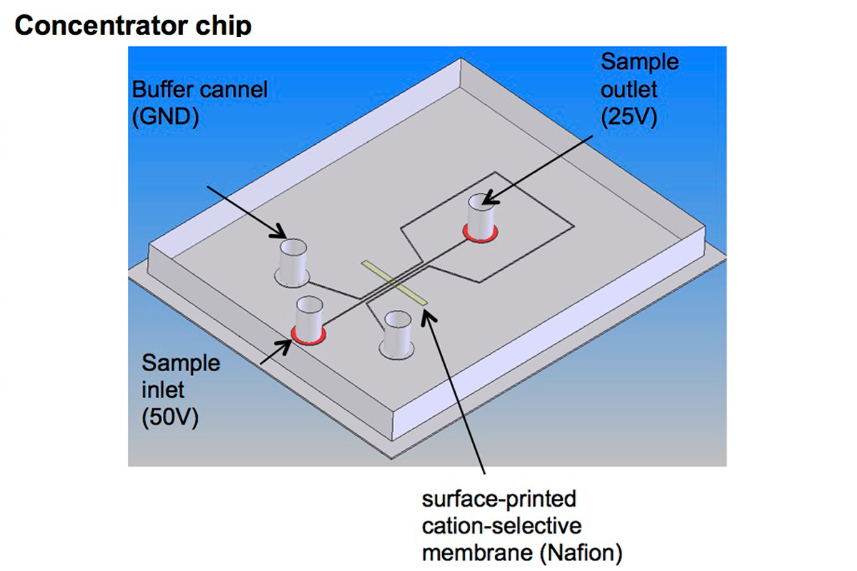 Electrokinetic Concentrator Chip