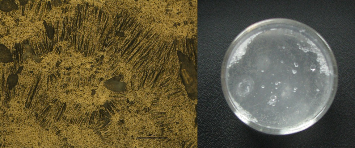 Optical micrograph (left) and free-standing thin film (right) of Teflon AF 1600.